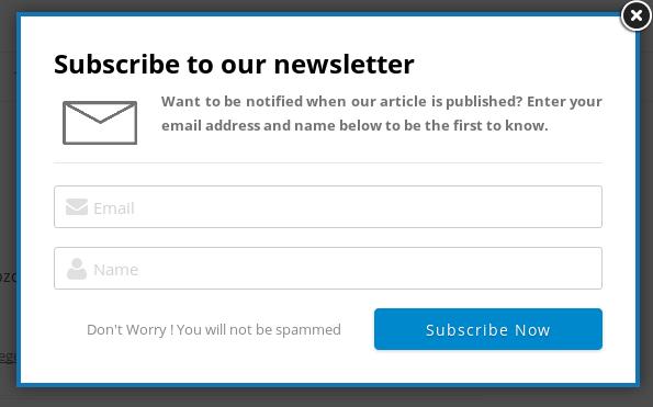 WordPress_Newsletter_Style_1