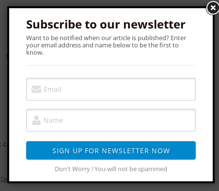 WordPress_Newsletter_Style_3