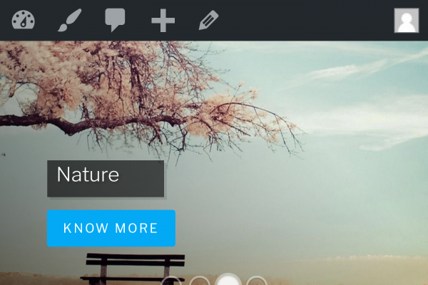 wordpress-full-width-slider-responsive-normal-view